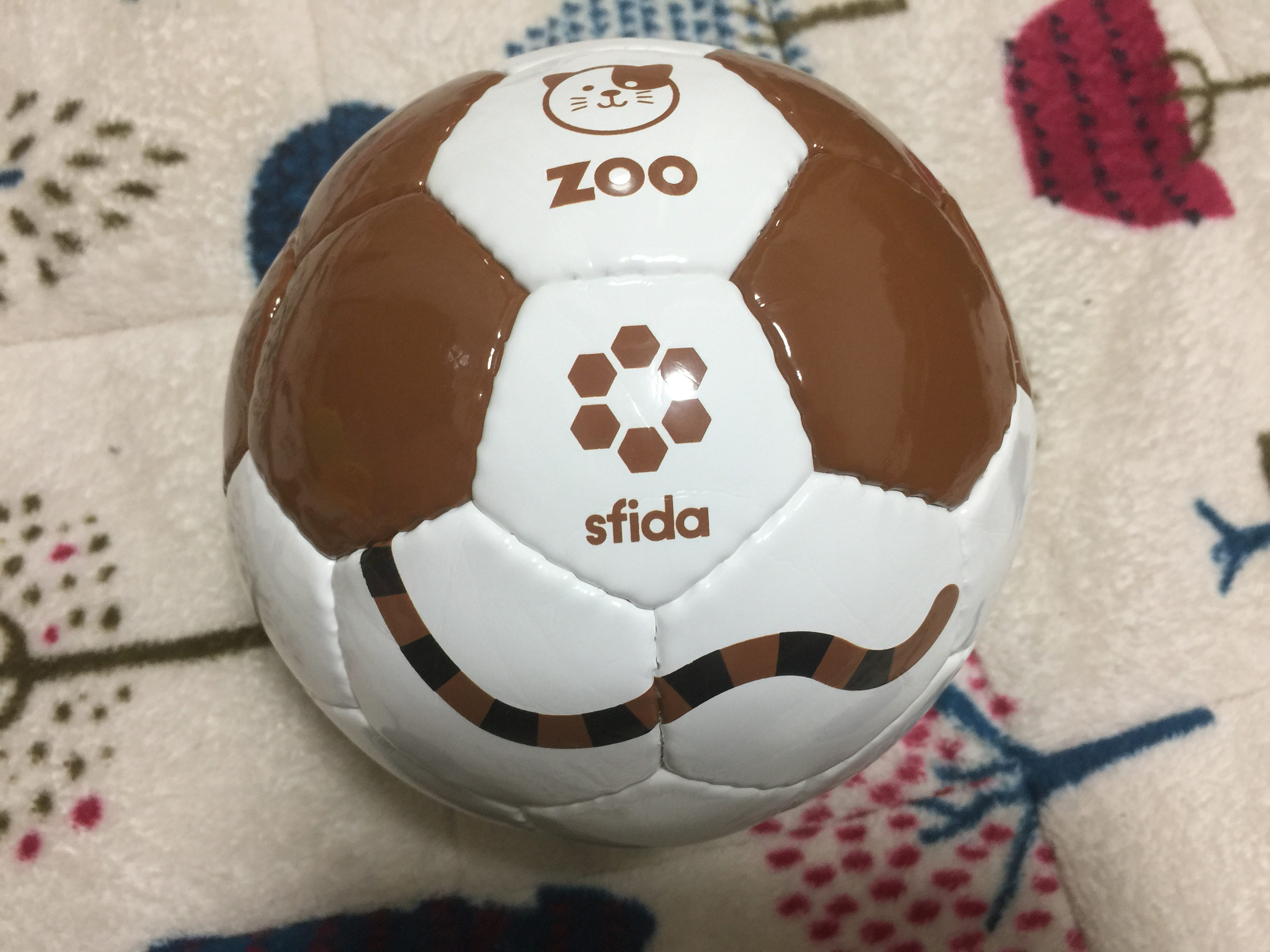 football zoo sfida